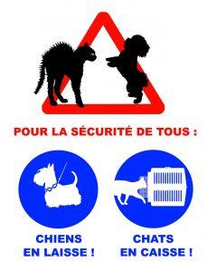 Urgences Vétérinaire-Saint-Sébastien-Sur-Loire